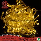 Luz LED de cadena para la decoración de Navidad (LS-SD-20-120-M1)