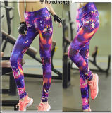 Exercício profissional para calças da ioga dos fabricantes do fato das mulheres