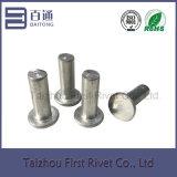 rebite de alumínio contínuo principal liso de 8X24mm