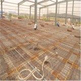 Fábrica de construção da construção de aço da oficina do projeto da construção