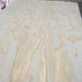 Irradiar la base del álamo de la madera contrachapada del pino para el mercado de Rusia de la construcción