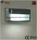 Iluminación al aire libre de la luz 9W LED de la pared en IP65