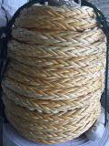 عال [مولكلر] وزن [أولترا] [روبس] بوليثين إرساء حبل
