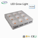 높 루멘 9X200W LED는 의학 플랜트를 위해 가볍게 증가한다