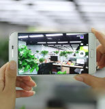 Teléfonos elegantes del teléfono Mtk6572 de A8 Gooophone de la Dual-Memoria 3G de la red de Andrews 6.0-Inch de la reproducción impermeable de alta definición elegante en pantalla grande de la visualización
