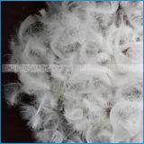 Prix blanc bon marché lavé de clavette d'oie