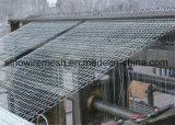 浸る熱いの金網の網か六角形ワイヤー網電流を通される