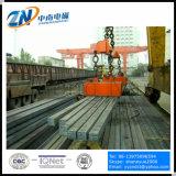 직사각형 모양 MW22-9065L/1로 드는 강철 지위를 위한 산업 드는 자석