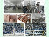 Gaoxiang Plastik-ABS trocknen Vorwahlknopf-kaltes Wasser-Messinstrument