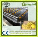 Hohe leistungsfähige Zitrone-Schneidemaschine