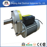 Motor elétrico monofásico de redutor de velocidade da C.A. com a engrenagem para o misturador concreto