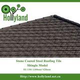 입히는 돌을%s 가진 강철 지붕 장 (지붕널 유형)