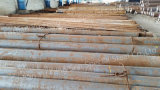 Daye 521/Mould Steel/Special Steel/Steel Bar