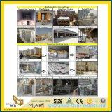 Lastra artificiale costruita beige del quarzo per le mattonelle di pavimento/controsoffitti