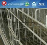 Baterias da estrela da prata do equipamento da exploração avícola para as galinhas poedeiras (A3L90)