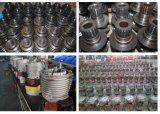 De Machines van de hoge Efficiency Hijstoestel van de Ketting van de Keten van 2.5 Ton het Dubbele Elektrische