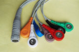 Rozinn Holter 7pin 7 Snap y Clip Cable ECG