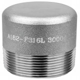 High Pressure Forged Steel 304/316L Hexagon Head Plug