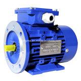 moteur électrique asynchrone triphasé de rendement élevé d'induction de série de 1hm Ie1