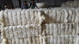 Ug de la fibra blanca blanqueada grado del sisal