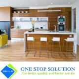Gabinetes de cozinha modernos da mobília da HOME do revestimento do folheado (ZY 1022)