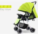 Fünf Farben-Baby-Spaziergänger-Baby-Träger-Baby-Buggy für Verkauf