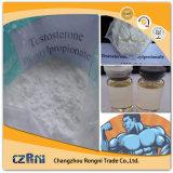 Testosteron Verkaufs-hoher Reinheitsgrad-bestes Qualitäts-CAS-Nr. 1255-49-8 Phenylpropionate/Prüfung P