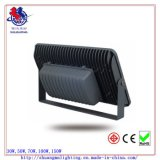 diodo emissor de luz Flood Light Highquality de 100W COB Outer