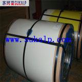 Bobina de alumínio revestida cor