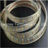 12V 5050 300LEDs indicatore luminoso di striscia luminoso eccellente bianco di luce del giorno impermeabile flessibile LED