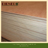 Mobília Grade Plywood Used Standard Size Commercial Plywood a Dubai Market