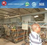 Geflügelfarm-Geräten-Silber-Stern-Batterien für Legehennen (A3L90)
