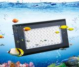 Luz elegante del acuario del poder más elevado LED para el tanque de pescados