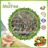 Mcrfee 100% wasserlösliches Düngemittel 24-08-08 NPK