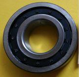 Zylinderförmiges Nj310 Rollenlager SKF, NSK, NTN
