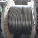 Tubo senza giunte e saldato dell'acciaio inossidabile degli ss 304/1.4301 (316L/321/347)