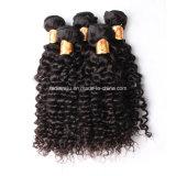Большинств волосы популярной пачки человеческих волос европейские (FDX-YY-KBL)