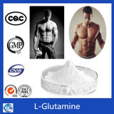 L-Glutamina del CAS 56-85-9 del suplemento de la nutrición de la categoría alimenticia de la L-Glutamina