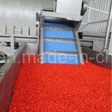 Lycium Goji натуральных продуктов мушмулы красный высушенный