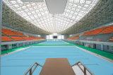 Tetto prefabbricato del blocco per grafici dello spazio della piscina della costruzione dell'ampia luce