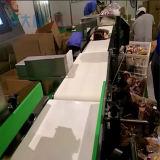 Metal detector del Combine 2016 & pesatore in linea dell'assegno
