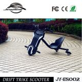 Heißes verkaufen100w elektrisches Trike mit Cer genehmigte (JY-ES002)