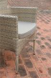 屋外の藤の長方形のダイニングテーブルおよび庭の籐椅子
