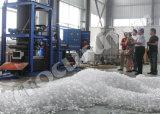 Creatore di ghiaccio commestibile del tubo 10t di Focusun