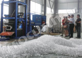 Focusunの食用10t管の氷メーカー