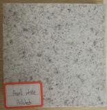 Encimera blanca del granito de la perla de la perla del material de construcción