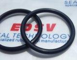 De Zwarte O-ringen FKM van uitstekende kwaliteit