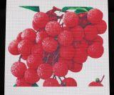 Fabbricato di maglia trasparente della bandiera della maglia del PVC
