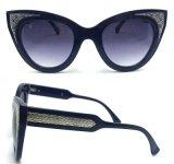 Gafas de sol calientes del Gato-Ojo