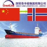 Remetente de frete do mar de FCL/LCL de Shenzhen/Shanghai/Xiamen China a Noruega de Oslo